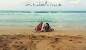 Viajar con perro a Punta cana #PuntaCanaSinPulsera