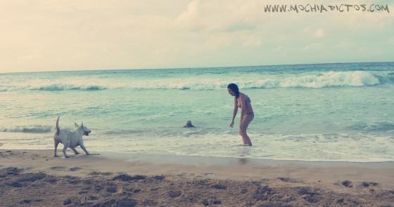 Playas pública Pinta cana
