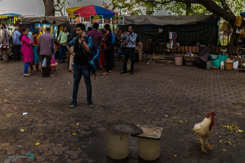bombay-india-fran-vargas-photography-27