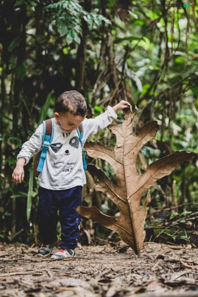 Borneo con niños