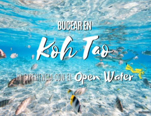 Bucear en Koh Tao: Mi experiencia con el Open Water y consejos.