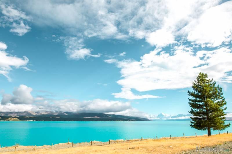 Consejos para ahorrar en Nueva Zelanda