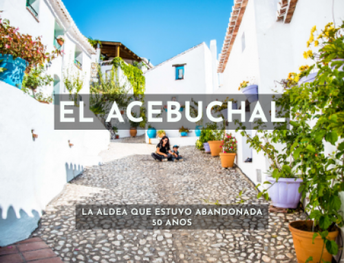 8 datos que te gustará saber al visitar El Acebuchal, Málaga.