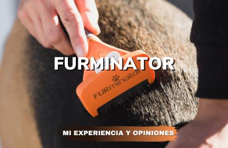 Furminator Mi experiencia y opiniones