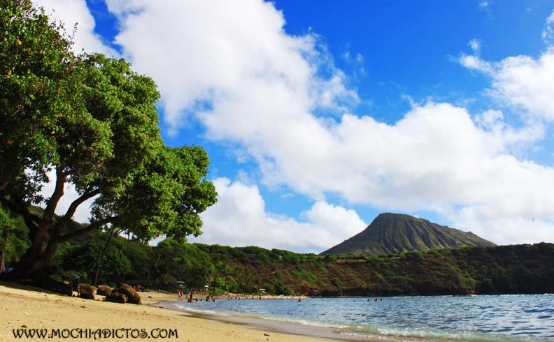 hawaii en 7 días