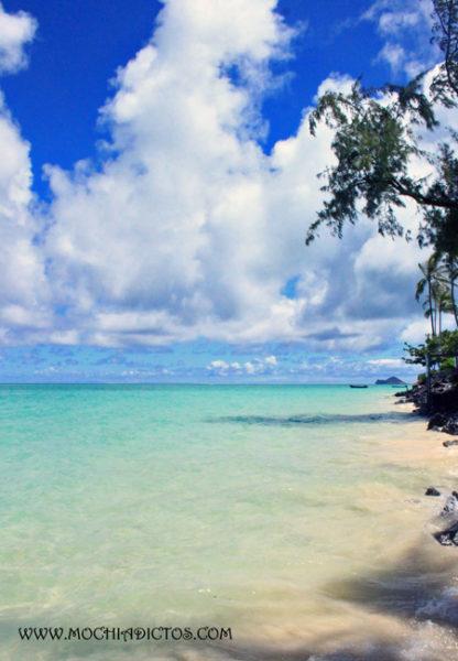 la mejor playa de hawaii