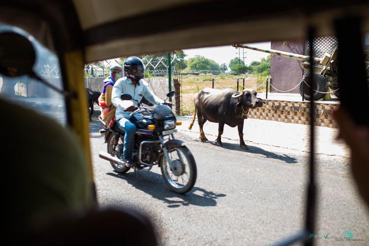 bomabay primera vez en India