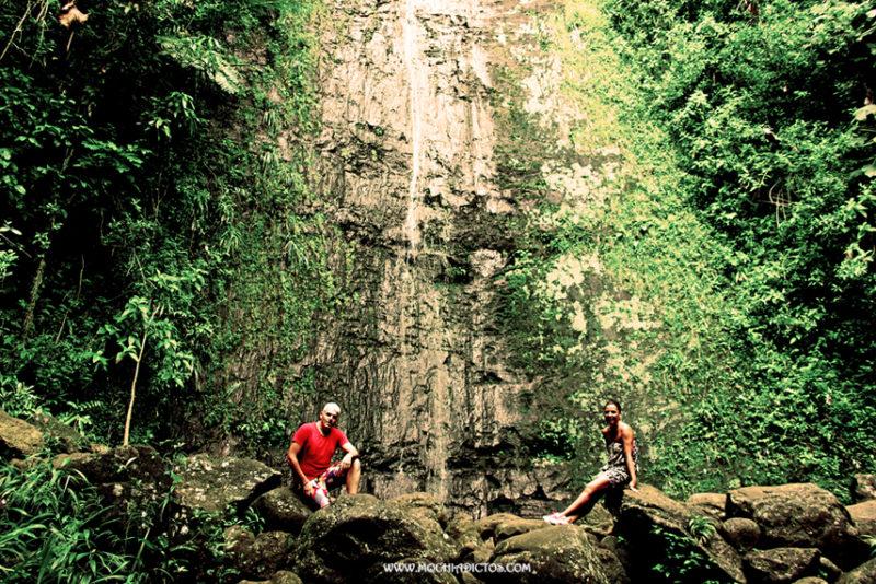Juntos en la selva
