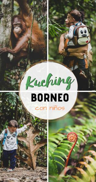 Kuching Borneo con niños, Pinterest