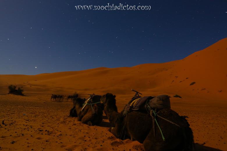 excursión desde marrakech al desierto en tres días