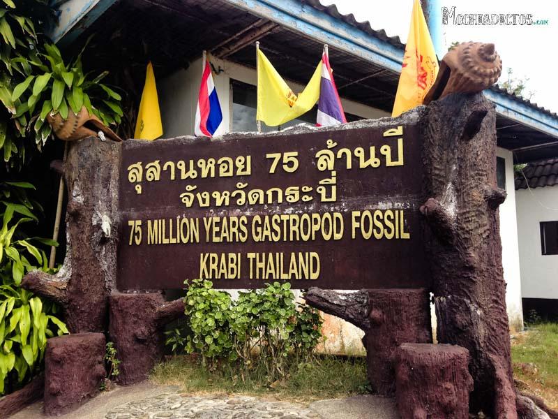 Que ver Hacer en Ao Nang,Krabi-19