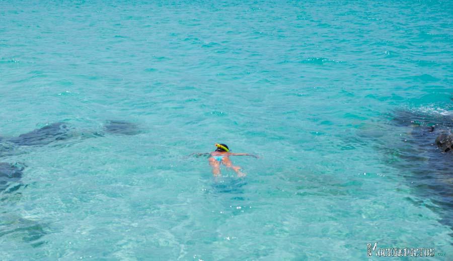 Snorkel en Coral Beach. Foto: Fran Vargas www.franvargas.com