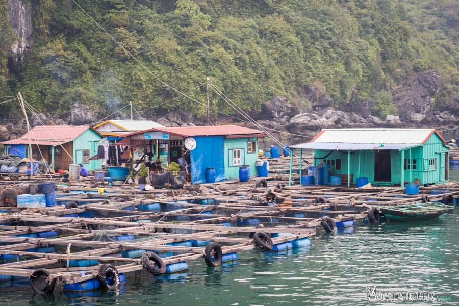 Que ver y que hacer en Vietnam,Halong Bay. www.mochiadictos.com-11
