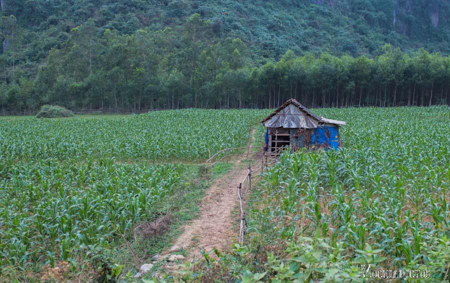 Alrededores de Phong-Nha, Vietnam