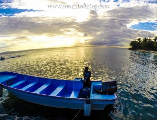 Día 232. El día de [no] ver Ballenas Jorobadas en Samaná
