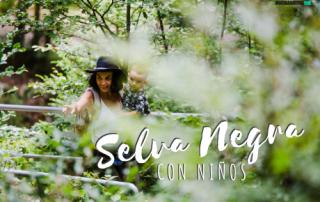 Viajar a la selva negra con niños