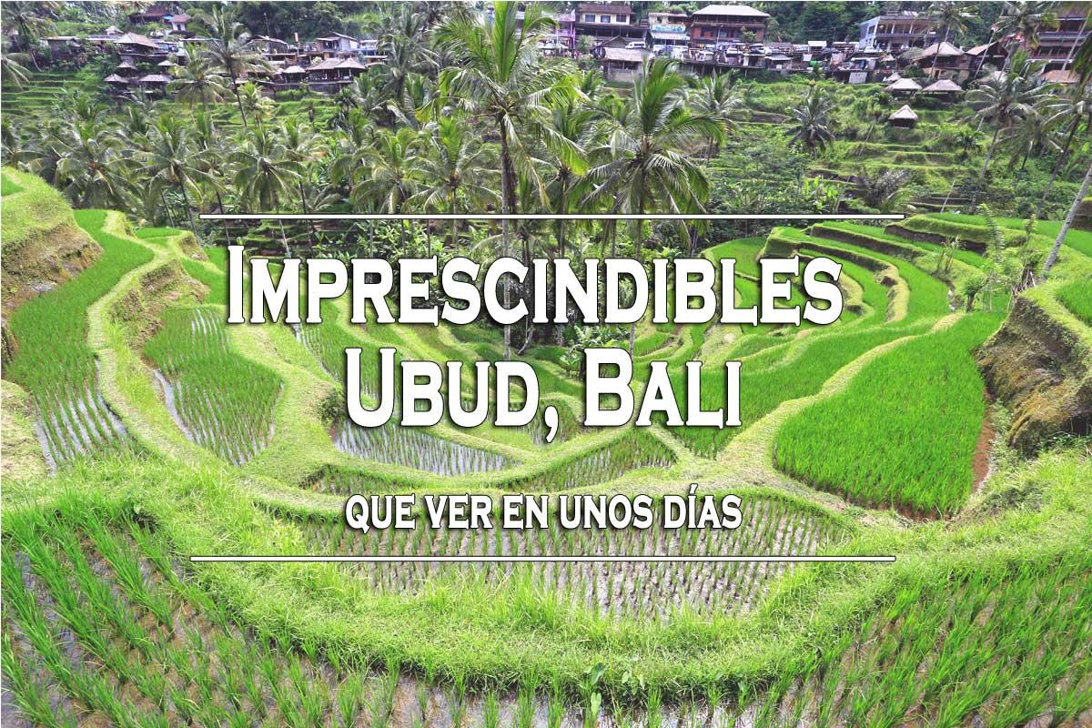 Que ver Ubud, Bali la ciudad de Come reza Ama