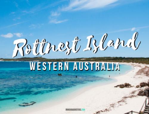 Visitar Rottnest Island ¡Mi experiencia y consejos!
